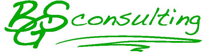 BGS-Consulting GmbH Bilanzierungsgesellschaft
